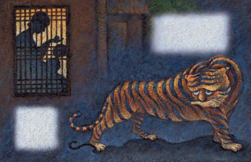 Tiger 20-21
